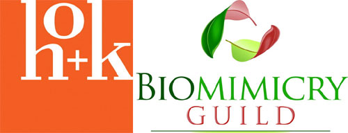 HOK and Biomimicry Guild